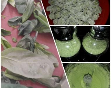Egyszerű zöld ravioli recept saját szárított bazsalikommal és spenóttal